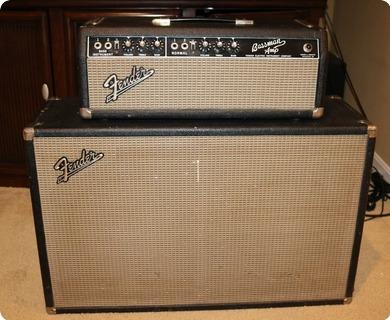 Fender Bassman (fam0166)  1964