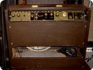 Magnatone Custom 450 1962 Brown