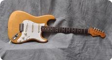 Fender Stratocaster 1965 Nature