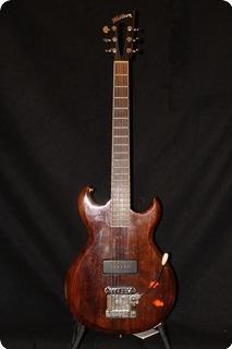 Washburn Parts Guitar Brown