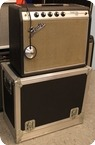 Fender Princeton Amp 1969