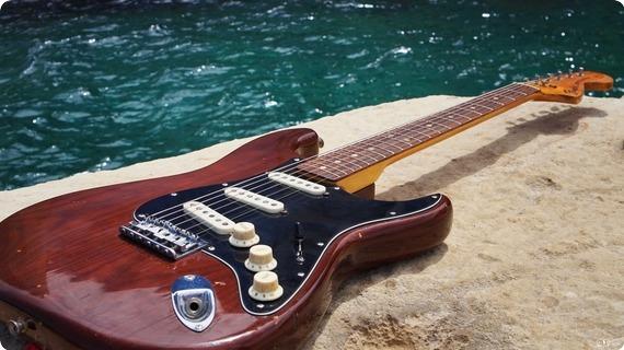 Fender Fender Stratocaster Hard Tail 1976 | Usa 1976 Cellulose Mocha Brown