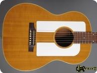 Gibson F.25 Folksinger 1966 Natural