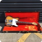 Fender Telecaster With Factory Fit Bigsby 1969 Sunburst