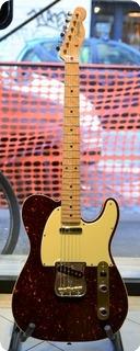 Fender Telecaster Masterbuilt 2015 Tortoise Covered