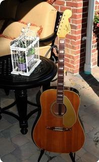 Fender Kingman (fee1000)  1968