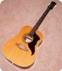 Eko Eko Ranger 6 Acoustic Guitar 1970 Natural