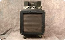 Ampeg B15 NF 1966