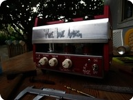 Pure Tone Amps The Autumn Star 2018 Custom