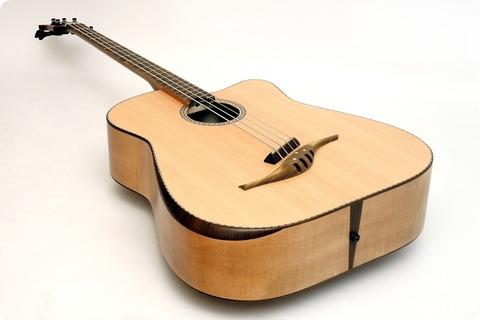 Stoll Guitars Iq Acoustic Bass Custom