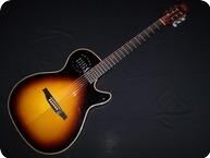Godin Guitars Multiac Steel Duet Ambiance 2014 Sunburst