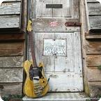 TP Custom Guitars Tonemeister Trem o tone