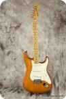 Fender-Stratocaster Nitro Satin-2014-Satin Honey