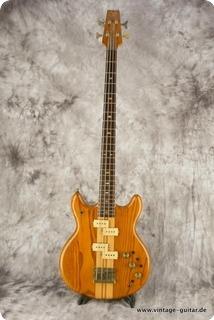 Vantage Devil Bass Va 900b Natural