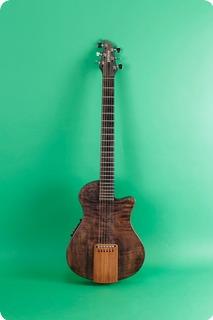 Veillette Acoustic Electric Guitar 1998 Ebony