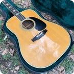 C. F. Martin Co D 41 Ex Billie Joe Armstrong Green Day 1970 Natural