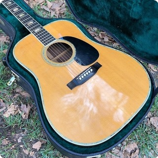 C. F. Martin & Co D 41 Ex Billie Joe Armstrong   Green Day 1970 Natural