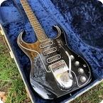 Burns Guitars Bison 1963 Black