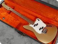 Fender Electric XII 1965 Fremist Gold