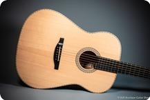 Stoll Guitars Ambition Natural