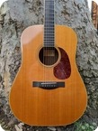 Santa Cruz DE Dreadnought 1999 Natural