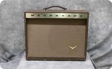 Magnatone 213 Troubadour 1959 Brown
