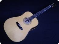 Bsg Guitars D33 Brazilian 2004 Natural