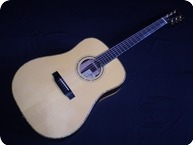 Bsg Guitars D33 Brazilian 2004 Natural