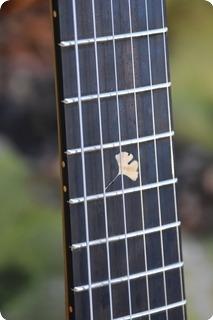 Pablo Sánchez Otero Guitars