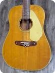 Fender Shenandoah XII 12 String 1966 Natural Finish