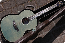 Takamine Ltd 2020 2020 Olive Greeb