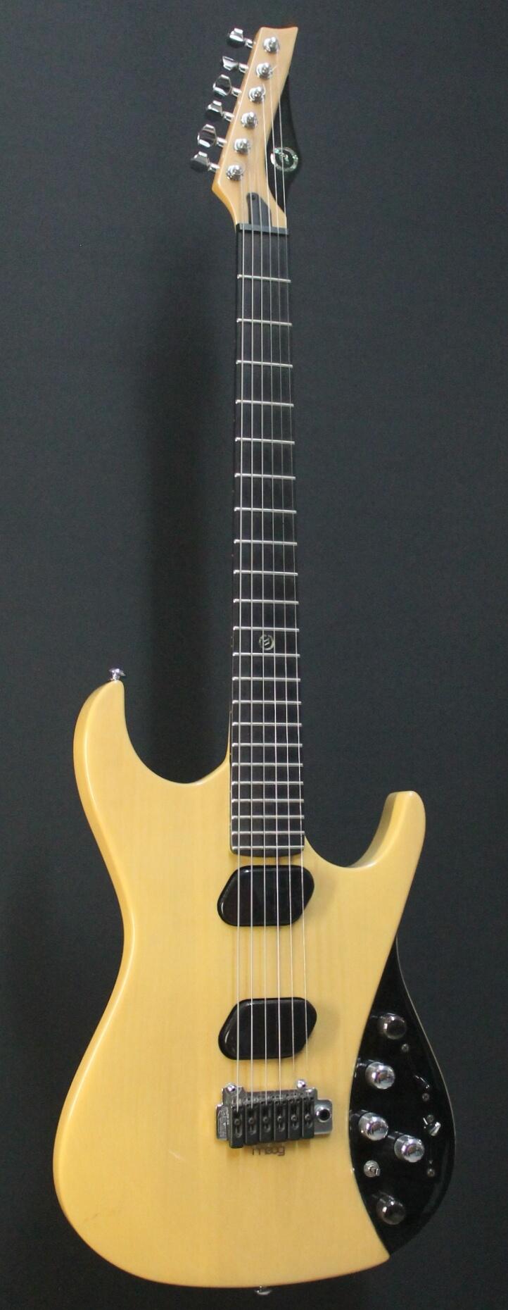 Moog guitar e1