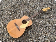 Fender Redondo Acoustic 1969 Natural