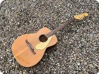 Fender Redondo Acoustic 1969 Natural