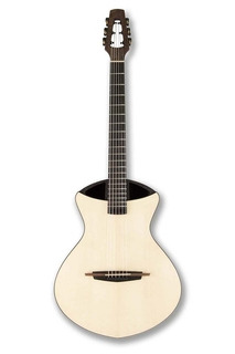 Pagelli Guitars 40anniversary  2019 Same Shape, But Different Woods