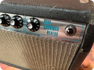 Fender Dual Showman Reverb Ex Alan Rogan Collection 1970 Black