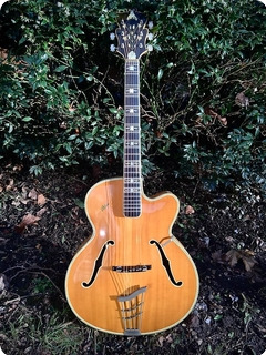 Hofner Committee , Museum Grade , The Worlds Finest 1955 Natural