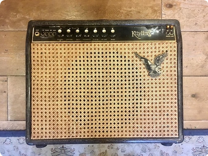 Kitty Hawk Dumble Style Combo (overdrive Special) Rare 50 Watt Switchable  1980 Natural