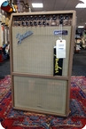 Fender-Fender Acoustasonic SFX 80 Watts 230 Volt