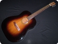Fylde Othello 1985 Sunburst