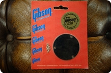 Gibson Gibson PRSP 010 Switchplate Black