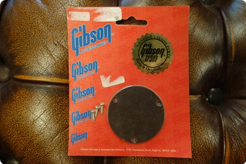 Gibson Gibson Prsp 020 Switchplate (brown)