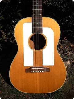 Gibson F25 Acoustic 1964 Natural