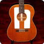 Gibson F 25 1964