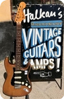 Fender Stratocaster Hardtail Custom Color Brown 1974