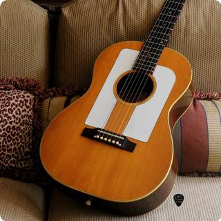 Gibson F 25  1965