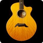 Breedlove Guitars Masterclass A25 Custom 2008