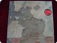 Terraced Garden Braille Melody And Menace Records CT 1958 1984