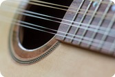 Dilemma Lutherie | 2