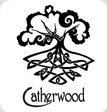 Catherwood Guitars